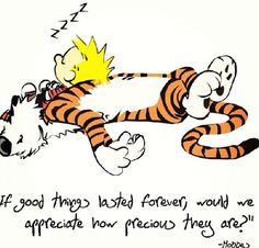 Calvin and Hobbes - If good things lasted forever, would we appreciate how precious they are?