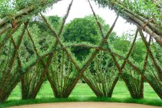 This isn't Heseltine's work. It's fabulous so i'll need a board for him later. Living Willow Structure - Sanfte Skrukturen