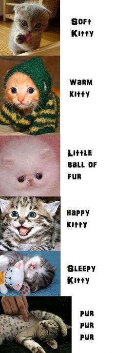Soft kitty warm kitty ....Sheldon