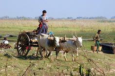 basic life in Myanmar