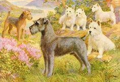 Schnauzer, Lakeland Terrier, West Highland Terrier, Vintage Dog Print, Edward Herbert Miner, 1930s, Dog Wall Decor