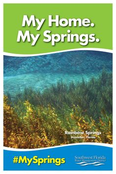 Download or order a free poster of Rainbow Springs.