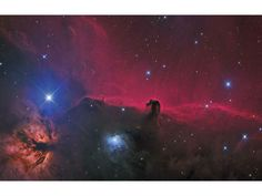 The Horsehead and Flame Nebulas David Fitz-Henry's colourful image of the Horsehead and Flame Nebulas took out the Photo Editor's Choice at ...