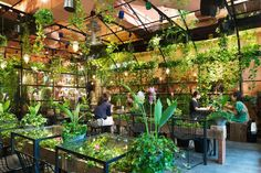 Aoyama Flower Market TEA HOUSE - the name says all, a cafe in a flower shop! Stunning. #Tokyo #Japan #Cafe