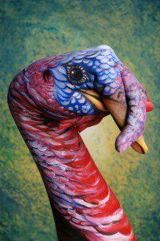 Turkey--Such good hand-art :) body painting, hand painting art Hand Art, Hand Painting Art, Art Paintings, Fantasy Eyes, Street Art, Finger Art, Body Art Photography, Quelques Photos, Illusion Art