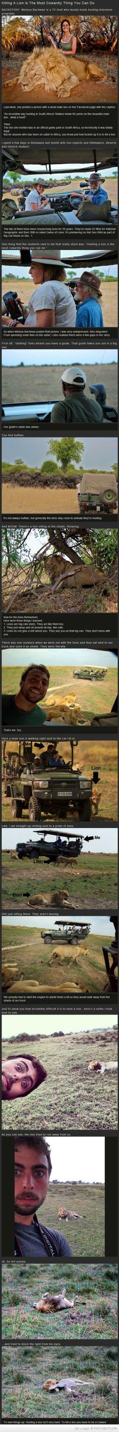 Killing A Lion Is The Most Cowardly Thing You Can Do