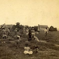 This is a photo of slaves working in the fields of South Carolina.  As this depicts, men and women alike worked in the fields while the youngest children and babies sat nearby.