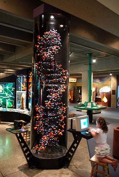 Boston Museum of Science is the oldest science museums in Boston. This is one of the largest museums in the United States attracting over one million visitors annually. The museum was founded in 1870. And curator or better known as the director of the Museum today is Malcolm Rogers.
