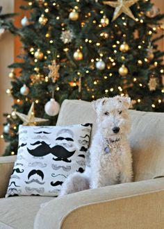 Mustache Pillow Cover   www.decorandthedog.net   #pillow #mustache