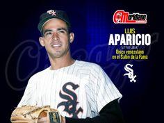 Luis Ernesto Aparicio Montiel (Maracaibo, 29 de abril de 1934) es un exbeisbolista profesional venezolano que jugó en la posición de campocorto en las Grandes Ligas de Béisbol durante 18 temporadas entre 1956 y 1973   Es hasta 2011 el único venezolano exaltado al Salón de la Fama del Béisbol y es considerado por la prensa deportiva como uno de los mejores y más veloces campocortos de todos los tiempos. Su carrera sirvió de inspiración  como Dave Concepción y Omar Vizquel entre otros muchos