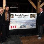 Prophecy Alert:  Jacob Sheep Return Home