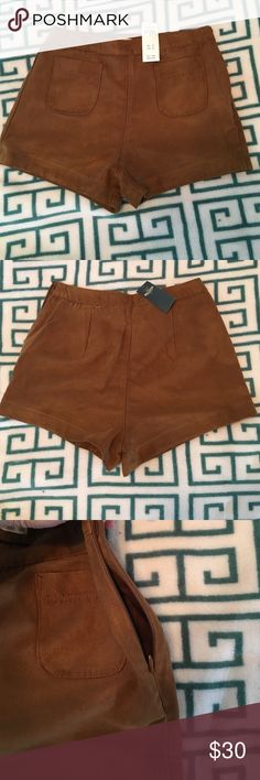 Hollister suede high rise short shorts NWT Hollister shorts with zipper on one side Hollister Shorts