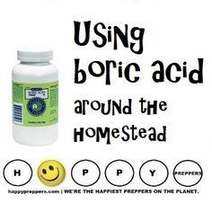 Using Boric Acid around the homestead: http://happypreppers.com/Boric-acid.html