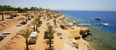 AA Grand Oasis w Sharm el Sheikh (Sharm el Sheikh, Egipt) - oferta i opinie Rainbow Tours S.A.