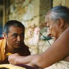 """Sooner or later, you will have to part from even your dearest friends. But one friend will never leave you. It is the Buddha-nature, pure awareness. You begin to discover it by listening to the teachings of a spiritual master. The ties will deepen as you cultivate sustained mental calm and profound insight into reality. In the end, you will discover that it has always been near you and will always be with you. This is the truest friendship you can ever cultivate."" ~ H.H. Dilgo Khyentse…"