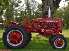 1955 Farmall model 100. Case Ih Tractors, Big Tractors, Farmall Tractors, Ford Tractors, John Deere Tractors, Old Ford Trucks, Lifted Chevy Trucks, Pickup Trucks, International Tractors