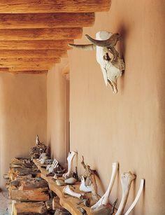 Georgia O'Keeffe's Ghost Ranch. - Georgia O'Keeffe had witnessed a devastating drought in the Southwest that caused the starvation and death of many animals. All around the skulls and carcasses of the dead animals littered the landscape.