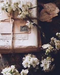 """'I must have flowers, always and always' Claude Monet – … """"Ich muss Blumen haben, immer und immer"""" Claude Monet – Flower Aesthetic, Book Aesthetic, Aesthetic Vintage, Aesthetic Photo, Aesthetic Pictures, Spring Aesthetic, Nature Aesthetic, Carnival Photography, Vintage Photography"""