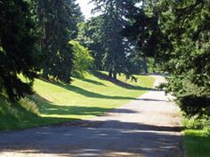 Mt Tabor Park SE 60th Ave & Salmon St  General Info Acreage: 190.82 Acquired in 1909  Amenities Includes basketball court, disabled access picnic area, disabled access play area, disabled access restroom, dog off-leash area, horseshoe pit, paths – paved, paths – unpaved, picnic shelter, picnic site – reservable, picnic tables, playground, stage, statue or public art, tennis court, tennis court – lighted, volleyball court, and wedding site – reservable.