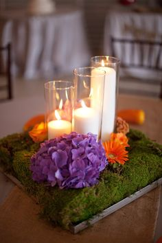 Moss. candles. purple. orange.