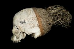 A Hungarian scientist in the world of cannibals | Hungarian Natural History Museum