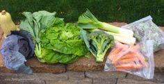 9 Tips to Save Money on Organic Food