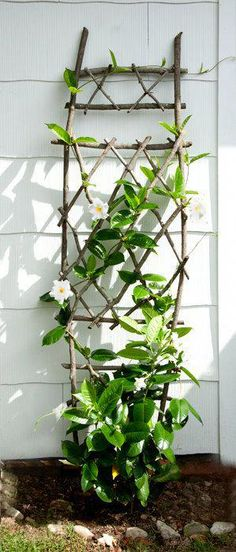 Handmade Trellis (Plant not included ) Handmade trellis system not in TenRodRoad on Etsy Diy Trellis, Garden Trellis, Plant Trellis, Raised Garden Bed Plans, Garden Bed Layout, Garden Styles, Garden Planning, Backyard Landscaping, Landscaping Ideas