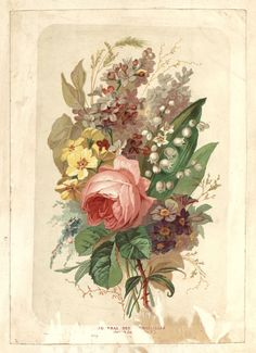 collection Bfm Limoges. Limousin, Illustrator, Bouquet, Painting, Collection, Art, Art Background, Bouquet Of Flowers, Painting Art