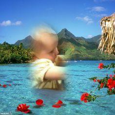 Wading Petals~