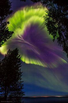g-a-r-l-a-n-d-s-j-p-n — renamonkalou: Northern Lights in Russia...