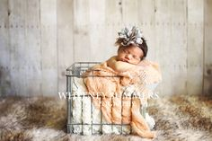 newborn photography by whitney summers