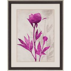 First Peony II Framed Painting Print