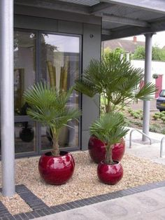 Cool and Clever Garden Planters Ideas Indoor Flower Pots, Flower Planters, Garden Planters, Small Front Yard Landscaping, Backyard Furniture, House Plants Decor, Water Features In The Garden, Office Plants, Plant Design
