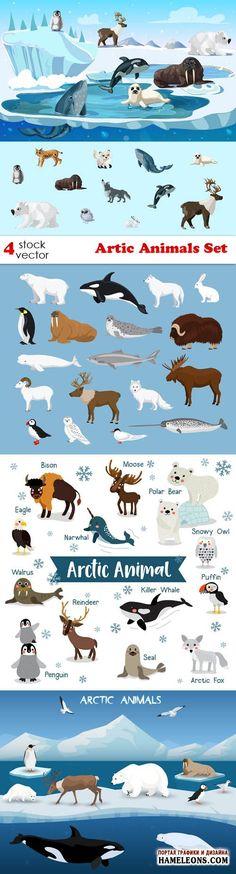 Животные в Арктике - векторный клипарт |  Artic Animals Set