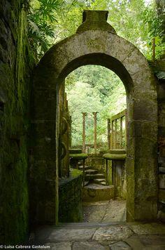 Las Pozas, garden of surrealist Edward James and xx Gastelum in Xilitla, Mexico. Photo by Luisa Cabrera Gastelum.