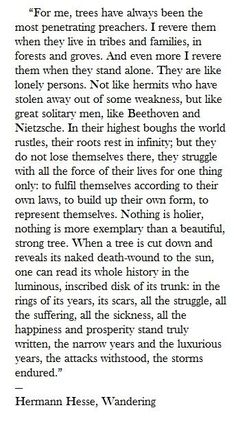 This makes me cry when I read it over and over again...it is just so beautiful ...and written in truth...