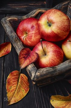Red Apple Kitchen Decor - Homipet - - Red Apple Kitchen Decor – Homipet Home decor Red Apple Kitchen Decor – Homipet Apple Painting, Fruit Painting, Still Life Photos, Still Life Art, Fruit And Veg, Fruits And Vegetables, Image Fruit, Apples Photography, Apple Kitchen Decor