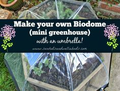 Sun Hats & Wellie Boots: How to make an Umbrella Greenhouse & create your own Biodome