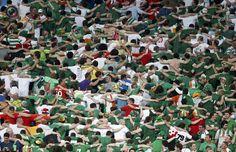 Great Irish fans. Italy vs. Ireland 2:0