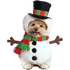 dog olaf costume - Google Search Snowman Costume, Dog Halloween Costumes, Pet Costumes, Dog Christmas Costumes, Santa Costume, Christmas Outfits, Christmas Fashion, Panda Puppy, Pet Dogs