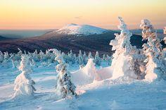 Miraclous winter in Taganai National Park. Source: Anton Agarkov / Strana.ru #russia #places #travel #tourism #winter #snow
