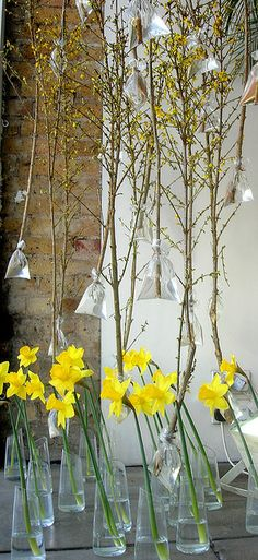 Spring Window Display   Flickr - Photo Sharing!
