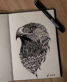 Adler draw eagle