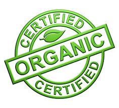 How to Start an Organic Farm