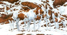 Εσείς πόσα άλογα βλέπετε σε αυτή την εικόνα; Η απάντηση θα σας εκπλήξει!