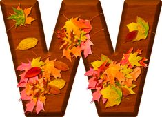 Presentation Alphabets: Cherry Wood Leaves Letter W
