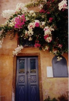 I am so thankful that I have flowers just like these in my garden! Door and Bougainville
