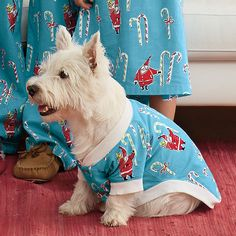 Make sure to grab some PJs for the family pup, too! #pjnight