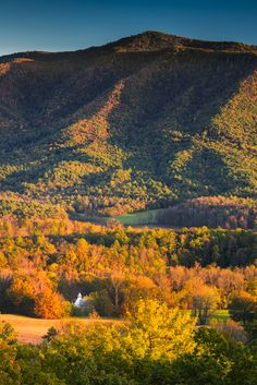 Look at these beautiful colors in the Great Smoky Mountains.