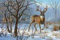 Winter Sunrise - whitetail deer painting by Larry Zach Wildlife Paintings, Wildlife Art, Animal Paintings, Deer Paintings, Original Paintings, Deer Photos, Deer Pictures, Deer Pics, Wild Life